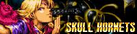Skull Hornets's banner